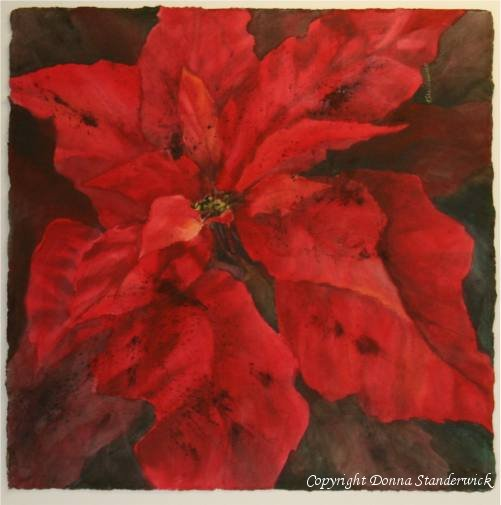 Poinsettia, watercolor painting
